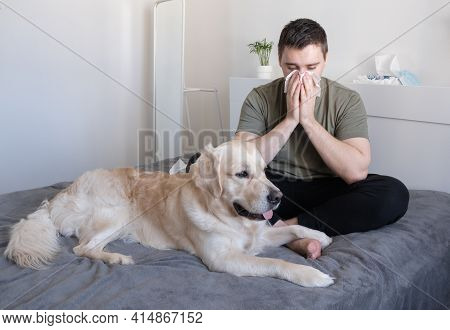 A Young Man Blew His Nose Into A Tissue While Sitting On The Bed With His Dog. The Guy Sneezes Near