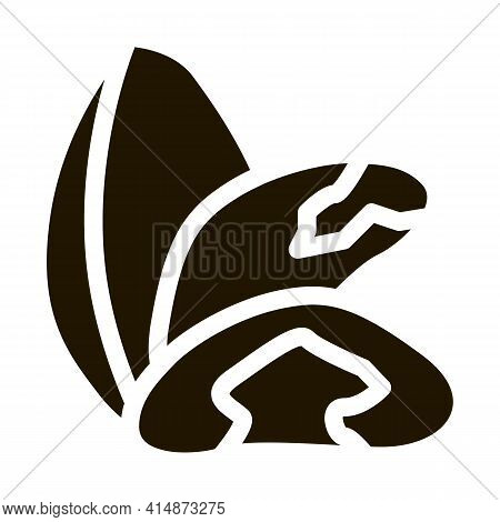 Brazil Nut Glyph Icon Vector. Brazil Nut Sign. Isolated Symbol Illustration