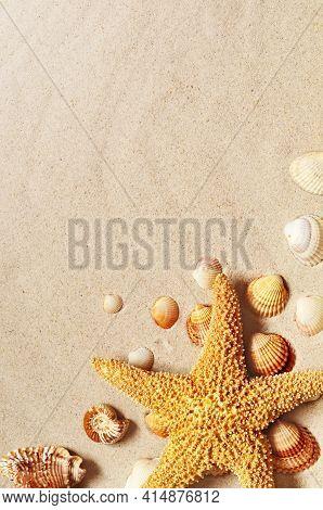 Starfish And Seashells On The Sandy Beach. Summer Background.