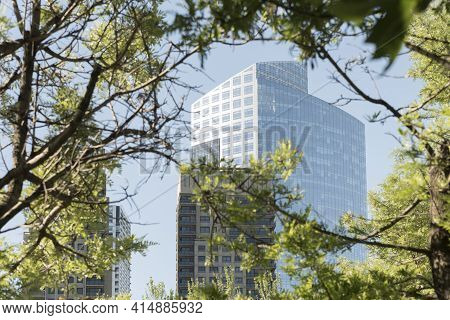 Modern Buildings Seen Through Tree Branches In Puerto Madero, An Exclusive Neighborhood In Buenos Ai