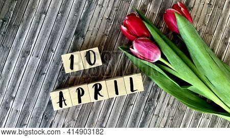 April 10 On Wooden Cubes.next To The Tulips On A Wooden Background.calendar For April.