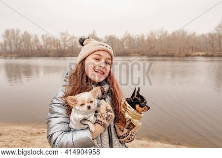 Teenage Girl With Two Chihuahua Dogs In Her Arms. Dogs In Clothes. A Pet. Dogs