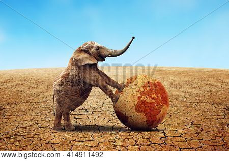 Lonely elephant with dry planet earth in parched country with cracked soil. Climate Change and Global warming concept.