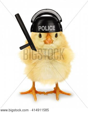 Cute cool chick cop policeman with police baton funny conceptual image