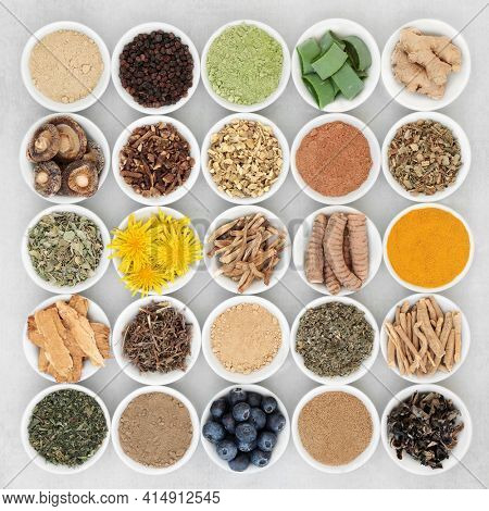 Plant based adaptogen healthy food collection with herbs, spices, fruit and supplement powders. Natural foods that help the body deal with stress and promote or restore normal physiological functions.