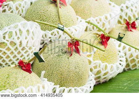 Fresh Melons Or Green Melons Or Cantaloupe Melons