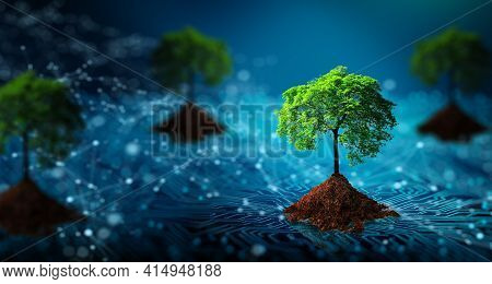 Tree With Soil Growing On  The Converging Point Of Computer Circuit Board. Blue Light And Wireframe