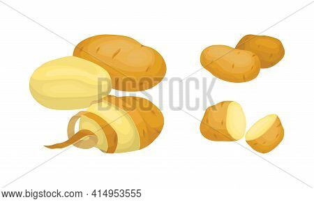 Whole Potato Sliced As Root Vegetable Or Starchy Tuber Of Plant Vector Set