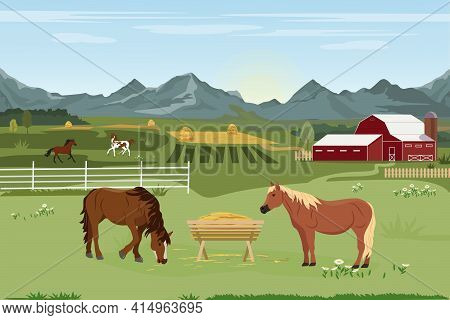 Vector Illustration Of A Horse Farm And Agriculture. Horse Breeding. Summer Rural Landscape With A F