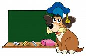 Dog teacher with blackboard and chalk - vector illustration. poster