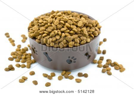 Overflowing Dog Food Bowl