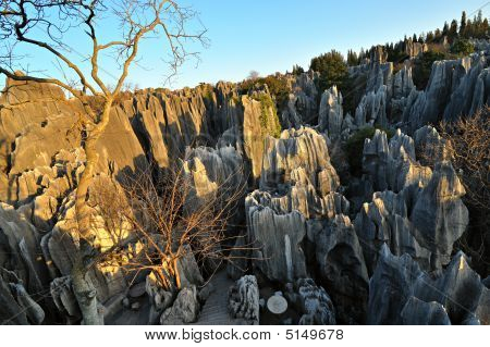 Stone Forest In Yunnan China