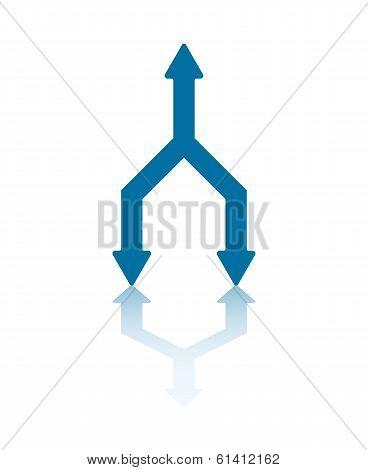 Duplication Arrows