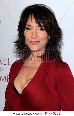 LOS ANGELES - MAR 11:  Katey Sagal at the Television Academy's 23rd Hall Of Fame Induction Gala at Beverly Wilshire Hotel on March 11, 2014 in Beverly Hills, CA