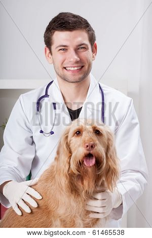 Dog during medical appointment with male vet poster