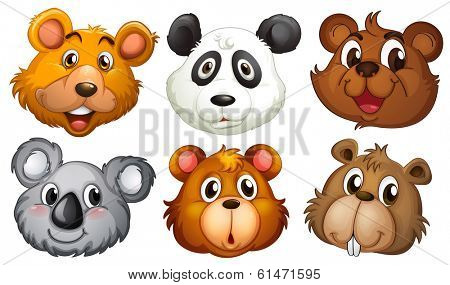 Illustration of the six heads of bears on a white background