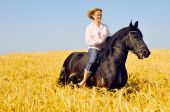 Beautiful smiling woman rides a pretty horse in field poster