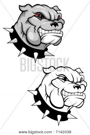 Bulldog mascot for design isolated on white poster