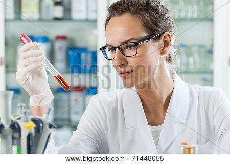 Scientist Analyzing Chemical Liquid