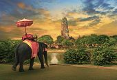 elephant dressing with thai kingdom tradition accessories standing in front of old pagoda in Ayuthaya world heritage site use for tourism and multipurpose background , backdrop poster
