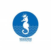 Blue and white seahorse business logo illustration poster