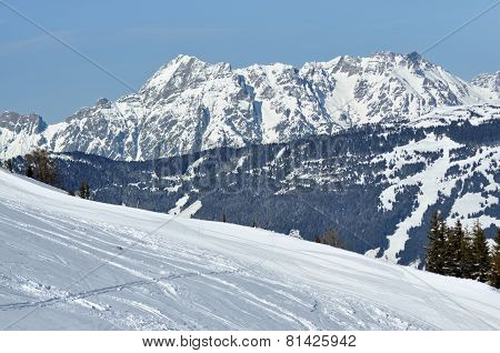 Off-piste Slope In The Alps