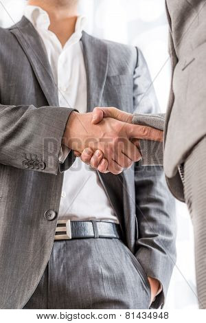 Businessman Shaking Hands With A Client