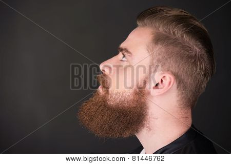 Stylish man with beard looking up