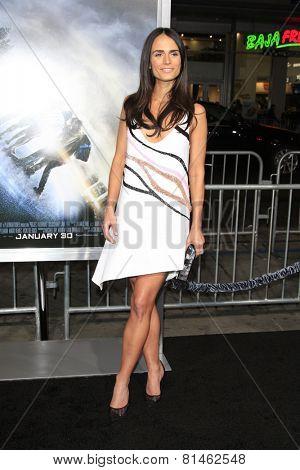 LOS ANGELES - JAN 27:  Jordana Brewster at the
