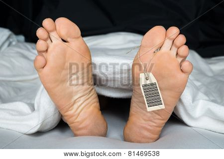 Person's Foot With Toe Tag