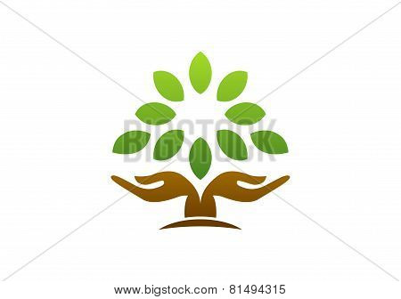 tree hand logo, hand tree nature wellness health symbol