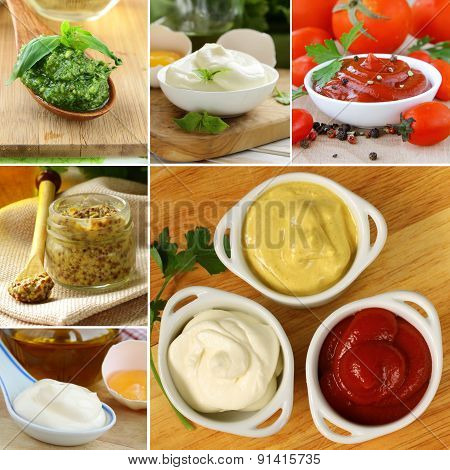 collage of different kinds of sauce (mustard, ketchup, mayonnaise, pesto)