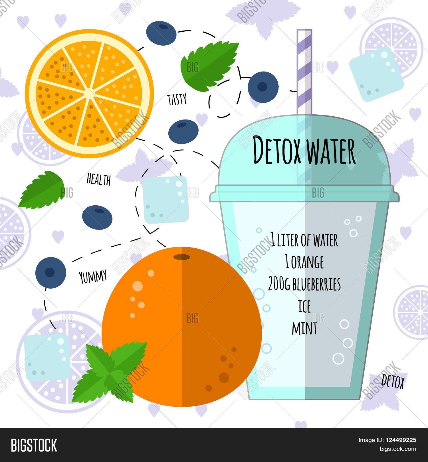 Recipe Detox Water Orange Mint Vector Photo Bigstock