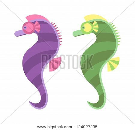Sea horse vector illustration. Cute sea horse cartoon. Sea horse ocean marine animal. Sea horse underwater. Seahorse isolated. Seahorse aquatic life. Sea horse vector.