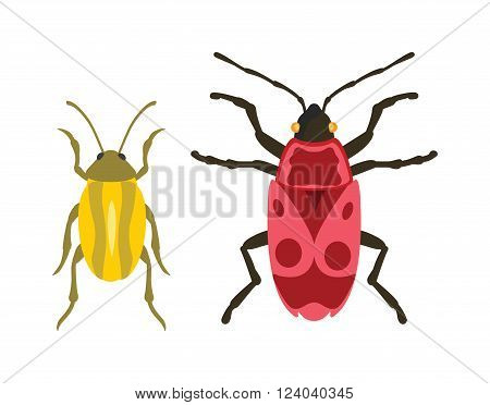 Beetles flat insect bug in cartoon style vector. Simple beetle insect wildlife. Cartoon bugs beetle color nature insect. Vector beetle cartoon style bug.