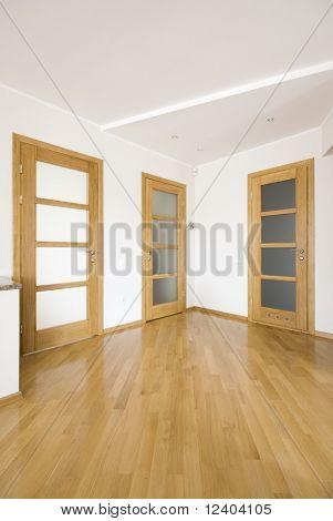 modern luxury wooden interior - hall