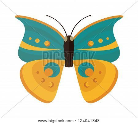 Flat butterfly vector. Some butterfly isolated on white background. Flat butterfly vector illustration. Colored flat butterfly isolated on white background. Flat simple butterfly vector