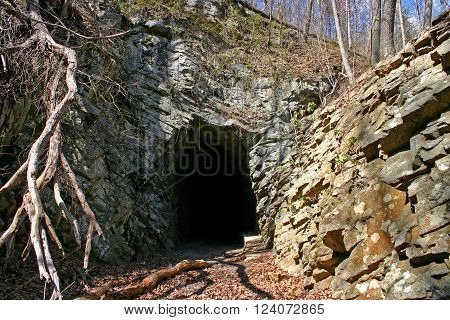 an old, unused, railroad tunnel carved through limestone