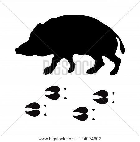 Wild boar animal black silhouette and wild animal predator symbol. Predator silhouette. Wild life black animal silhouette. Black silhouette wild animal zoo vector.