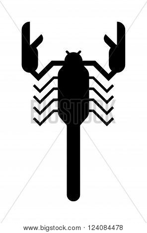 Scorpion silhouette Scorpion silhouette tattoo poison insect and scorpion silhouette poisonous claw graphic tail. Scorpion silhouette drawing horoscope. Scorpion black silhouette insect animal vector.