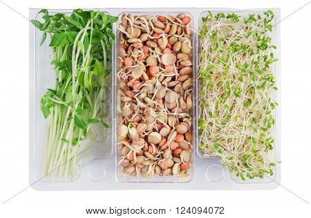 gourmet pack of alfalfa,snow peas and lentils isolated on white