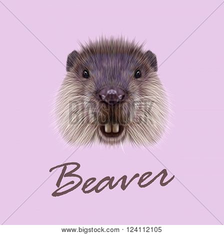 Cute face of aquatic fluffy rodent on pink background.