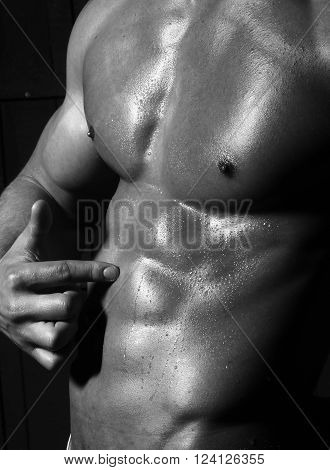 Male Delightful Athletic Torso