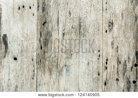 Old Wood Texture/ Wood Texture, abstract background.