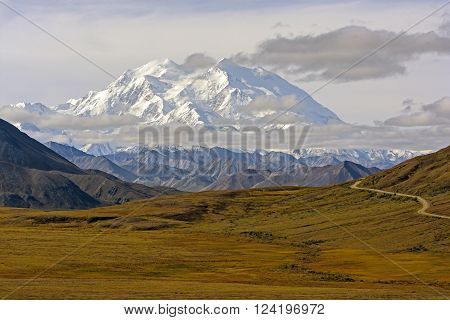 Denali above the Fall Tundra in Denali National Park in Alaska
