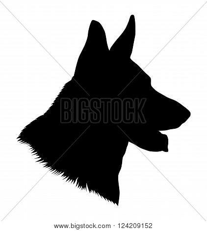 German shepherd dog head, black and white illustration