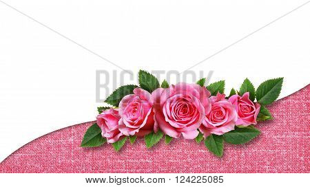 Pink rose flowers wave arrangement on pink canvas and white background