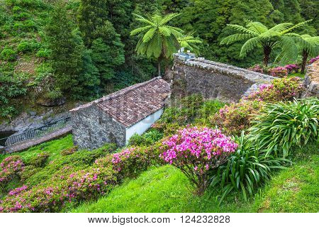 Garden on Sao Miguel island Azores. It is located in the midst of this magnificent water system.
