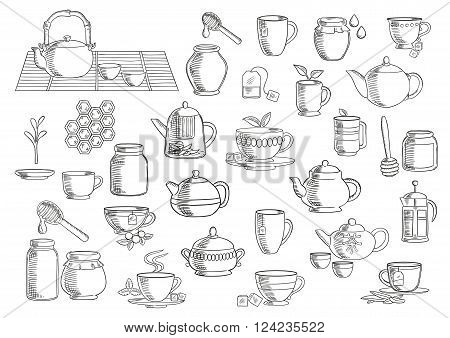 Tea and beverages hand drawn icons set with cups and mugs with fresh tea leaves, sugar cubes and tea bags, oriental tea sets, retro ceramic teapots and modern glass pots with plunger and infuser, jars of natural honey with dippers. Food and drinks theme