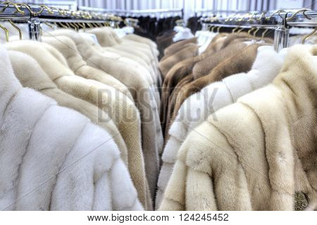 Showroom coats with fur factory. Warm elegant clothes
